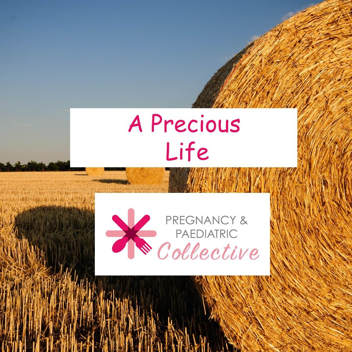 A precious life
